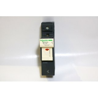 Schneider Electric DF141V 14*51